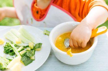 Aprenda a fazer saborosas receitas de papinhas para seu bebê 2